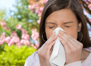 allergia ellen