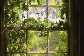 A műanyag ablakcserét érdemes igényelni