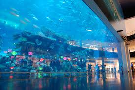 Egy óriás akvárium tervezés és kivitelezés